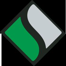 Saltzer Icon