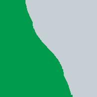 Saltzer Health Logo